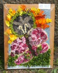 Additional Well Dressing at Canal Basin (Good News)