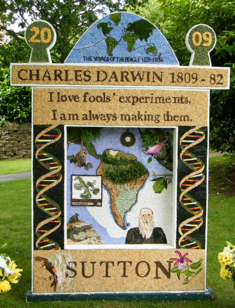 Sutton Lane Ends 2009 - The Pleasance Well Dressing