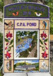 Canal Basin Well Dressing