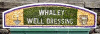 Additional Well Dressing at Canal Basin (Whaley Well Dressing)