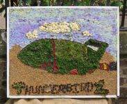 Mill Meadow Way Children's Well Dressing