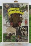 Ashford Women's Institute Well Dressing