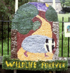 Wildlife Watch Group Well Dressing
